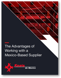 The Advantages of Working with a Mexico-Based Supplier eBook Cover